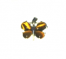 Tiger Eye Butterfly Pendant